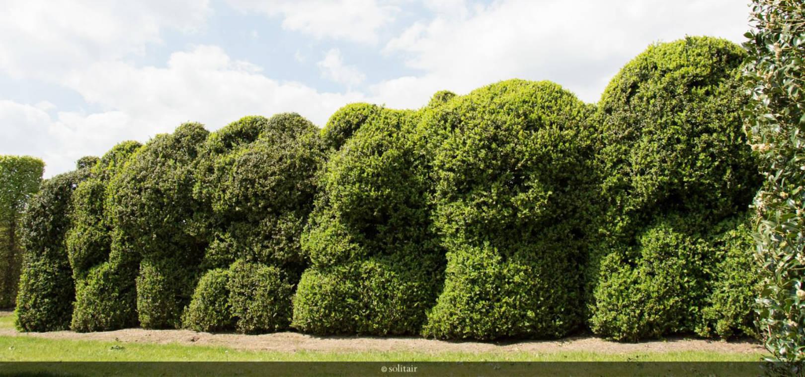 garten und landschaftsbau darmstadt, gärtner garten und landschaftsbau aus bickenbach bei darmstadt, Design ideen