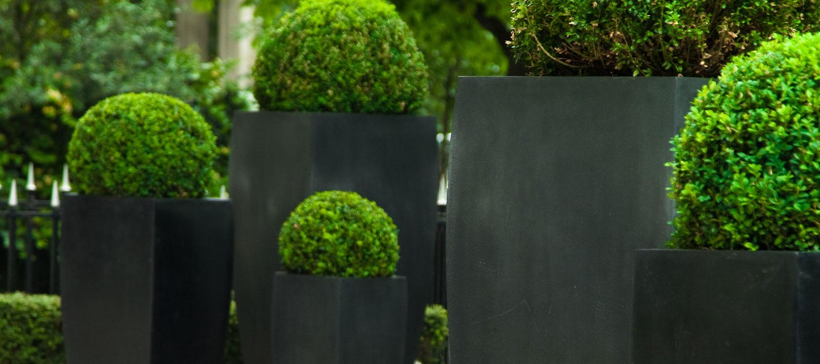 garten und landschaftsbau darmstadt, schnellbacher garten- und landschaftsbau aus bickenbach bei darmstadt, Design ideen
